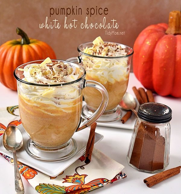 Crisp apples, ripe cranberries and plenty of pumpkin spice go into making these 13 fantastic fall drinks to give you something to look forward to this fall! | fall inspired drink recipes | drink recipes for fall | fall beverages | pumpkin flavored drink recipes | apple flavored drink recipes | pumpkin spice drink recipes || Design Dazzle