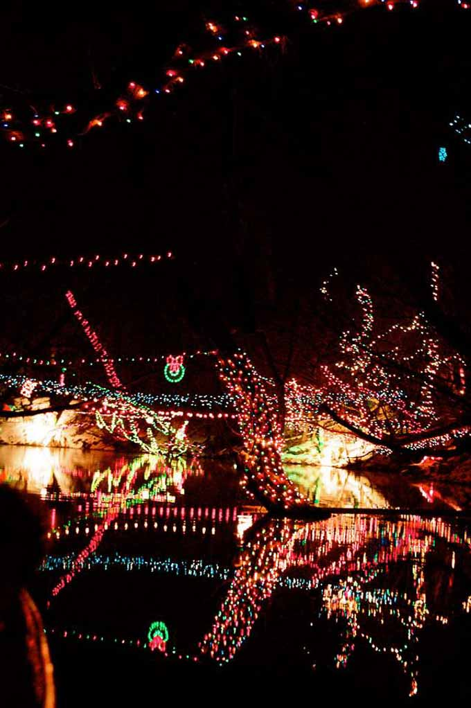 Here are 20 of the most magically-awesome events to do in Southern Utah during the Holiday season! Your family will love all of these events! | Design Dazzle
