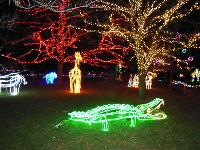 Here are 20 of the most magically-awesome events to do in Northern Utah during the Holiday season! Your family will love all of these events!   Design Dazzle