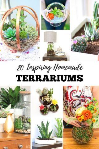 20 Inspiring Homemade Terrariums