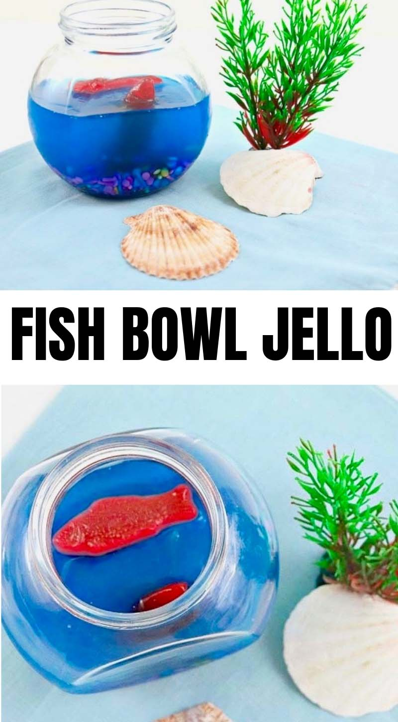 This fish bowl jello will definitely add so much fun, color, and character to your party or any room in your home especially this summer! - Design Dazzle