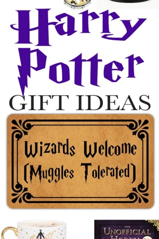 Harry potter gift ideas 1